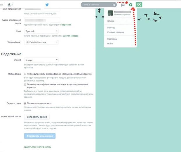 Twitter'da ekran görüntüsü menü ayarları