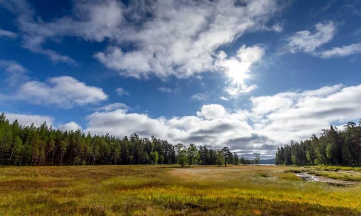 The moors at Miikkula