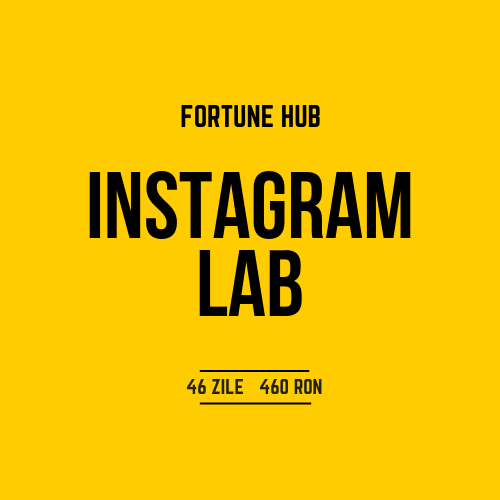 Ruxandra Babici_Fortune HubInstagram Lab