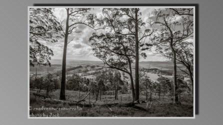 B&W landscape