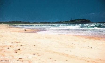 Annie walking on the beach