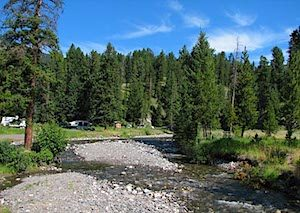 Pebble Creek Campground Yellowstone