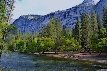 North Pines Best Campground In and Near Yosemite National Park