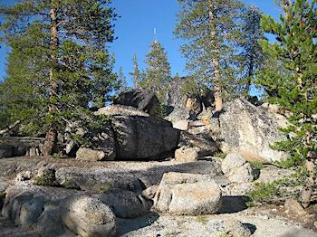 Best RV Campgrounds In and Near Yosemite - White Wolf Campground