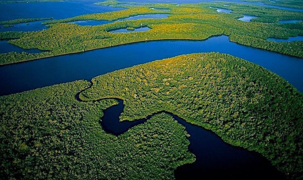 Best National Parks East Coast Everglades National Park