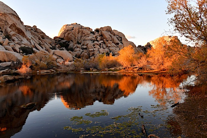 Joshua Tree national park Barker dam