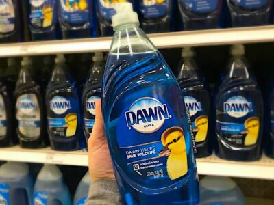 Can I Wash My RV with Dawn Dish Soap?