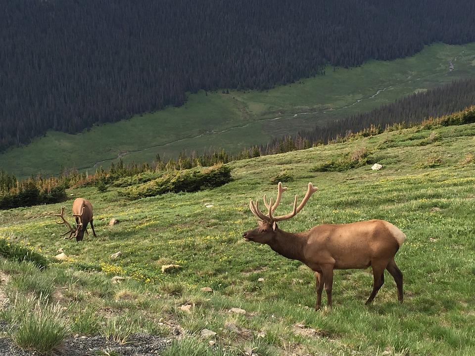 Hike Through Rocky Mountain National Park Colorado Bucket List
