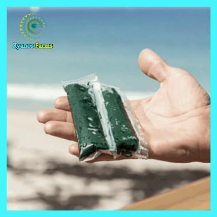 FRESH Spirulina shipped To Your Doorstep!