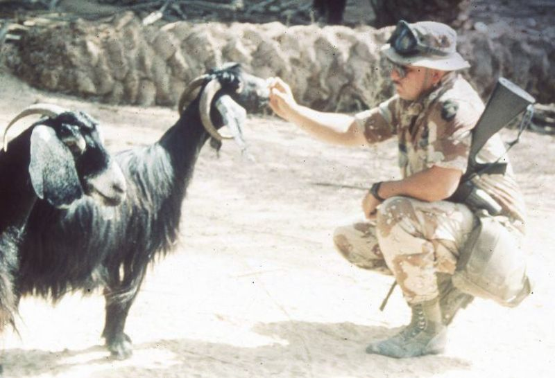 Desert Storm soldier feeding goats--no staring here!
