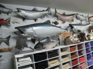 Mounted Alaskan-caught fish are also on display
