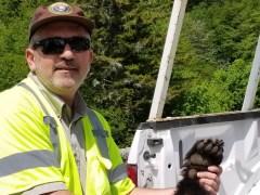 Brad Saum and Smoky Mountain Bears