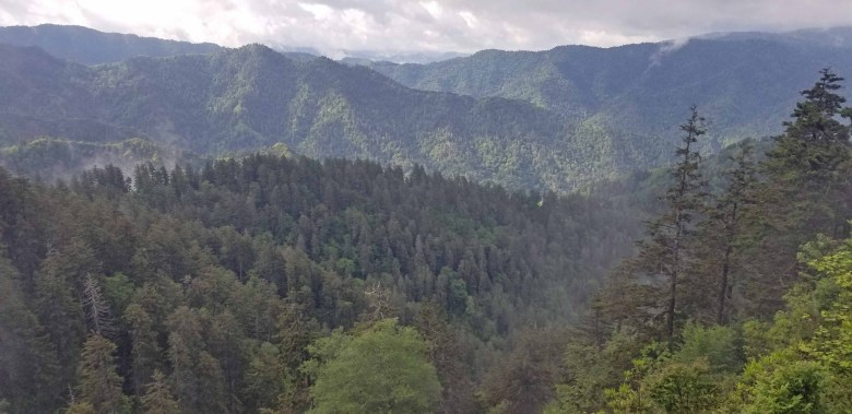 Great Smoky Mountains National Park view