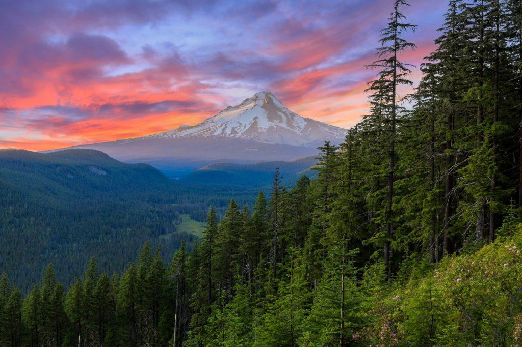 Beautiful Vista of Mount Hood in Orego