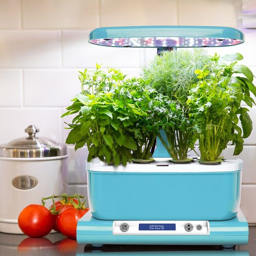 Miracle-Gro AeroGarden Harvest (LCD Control Panel) with Gourmet Herb Seed Pod Kit