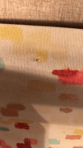 RV window idea: Fabric pinned to cover cornice / valance