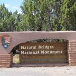 Great Escapes: Natural Bridges National Park