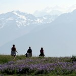 Great Escapes: Hurricane Ridge in Olympic National Park
