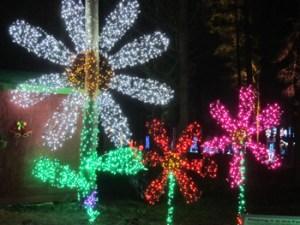 Christmas at the Oregon Garden