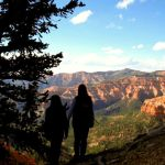 Practice Safety In The National Parks And Beyond