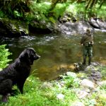Fishing with Man`s Best Friend has its Merits