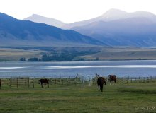 5 Things You Need To Experience Near Ennis, Montana