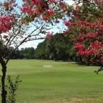See The Hidden Gems Of North Alabama