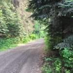 We Found A Free Hidden Campground In Washington