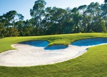 Play A Round Of Golf While You're At Disney World