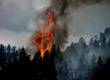 Wildfire Safety Tips That Could Save Your Life