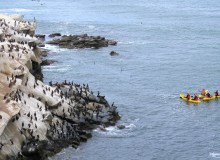 The 10 Best Places To Go Sea Kayaking On The West Coast
