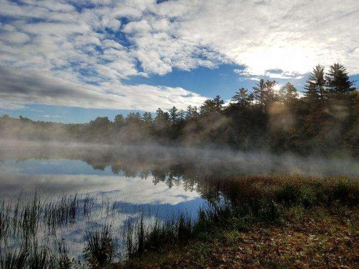 Fog shrouds Courtney Lake just before sunrise