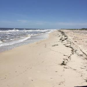 Our private paradise on St. George Island