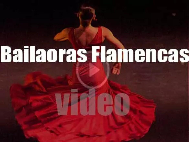 Bailaoras Flamencas