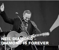 Neil Diamond - Diamond Is Forever