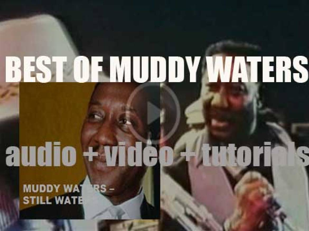 We remember Muddy Waters. 'Still Waters'