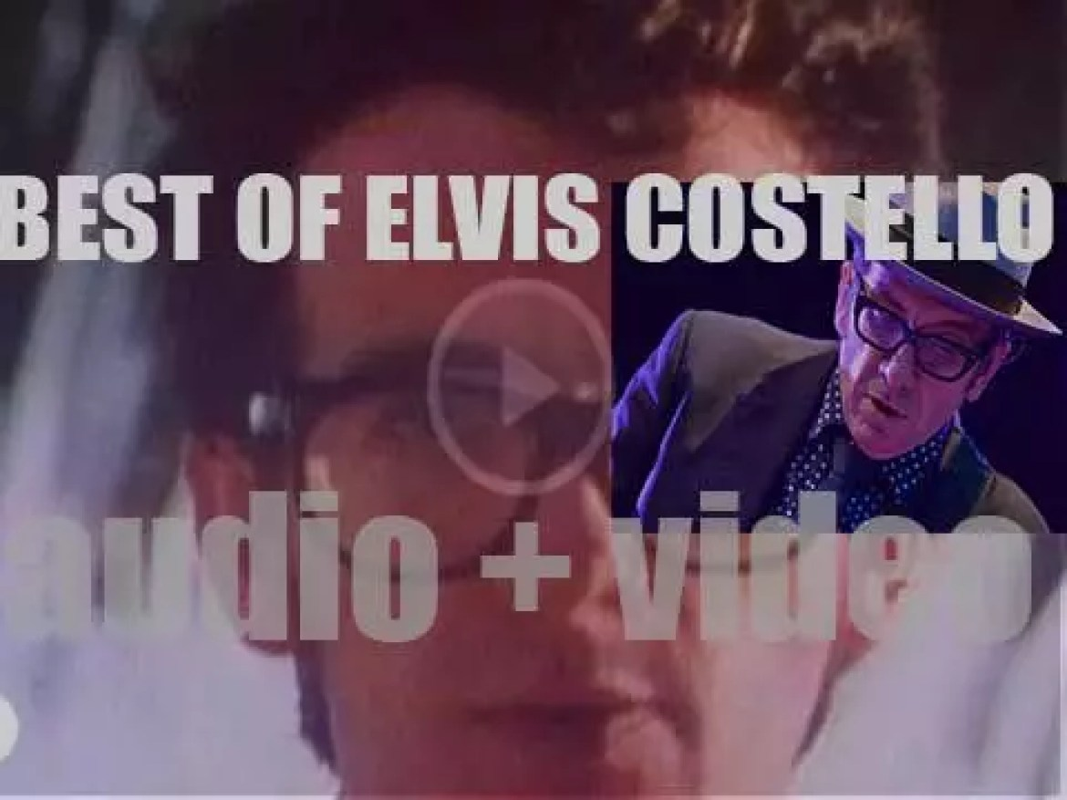 Happy Birthday Elvis Costello. 'About Costello'
