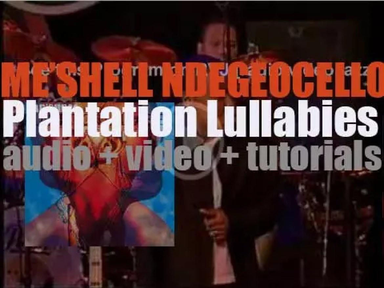 Maverick release Me'shell Ndegeocello's debut album : 'Plantation Lullabies' (1993)