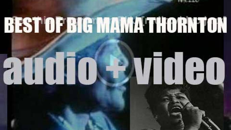 We remember Big Mama Thornton. 'Dog Mama'