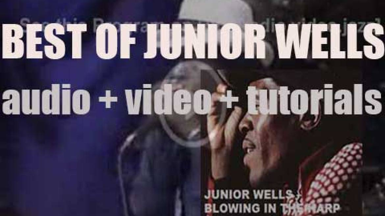 We remember Junior Wells. 'Blowing In The Harp'