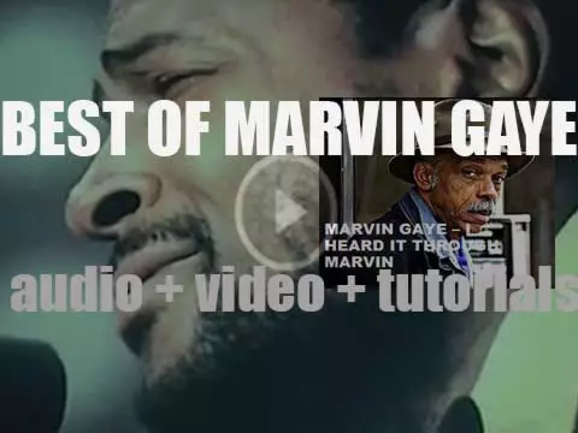 We remember Marvin Gaye. 'I Heard It Through Marvin'