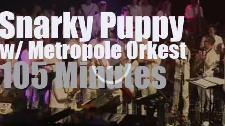 "Snarky Puppy & Metropole Orkest are ""sous les pommiers"" (2015)"