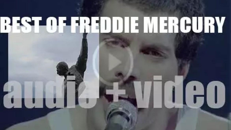 We remember Freddie Mercury. 'Freddie The Great'
