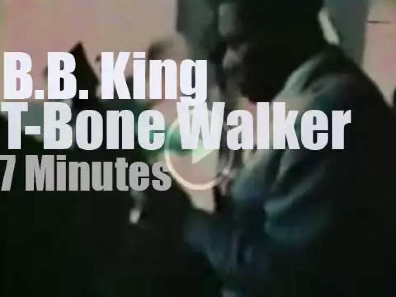 T – Bone Walker joins BB King in Monterey (1967)