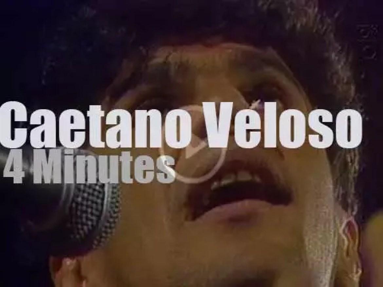 On TV today, Caetano Veloso at 'Radiola'  (2008)