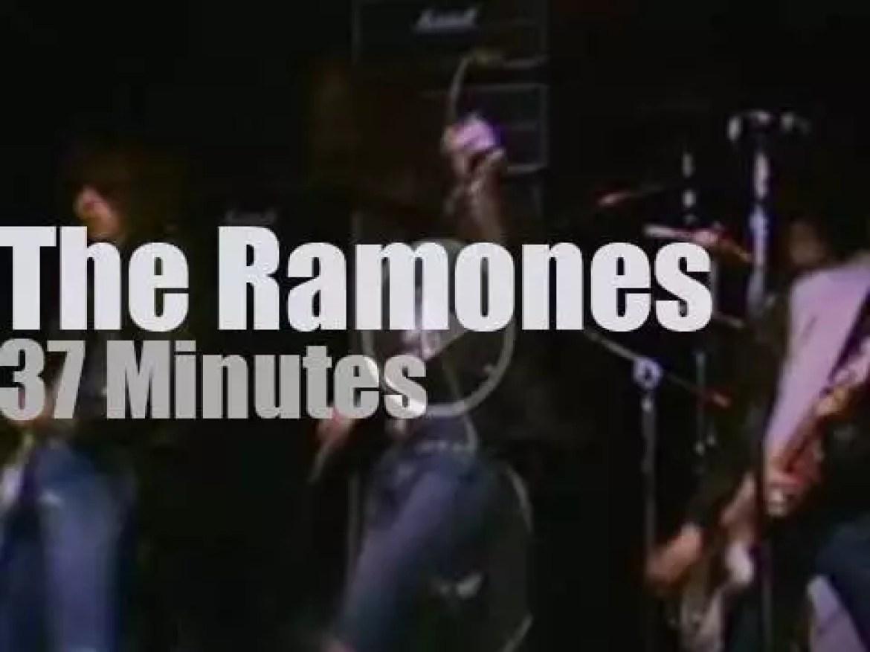 The Ramones rock  CBGB (1977)