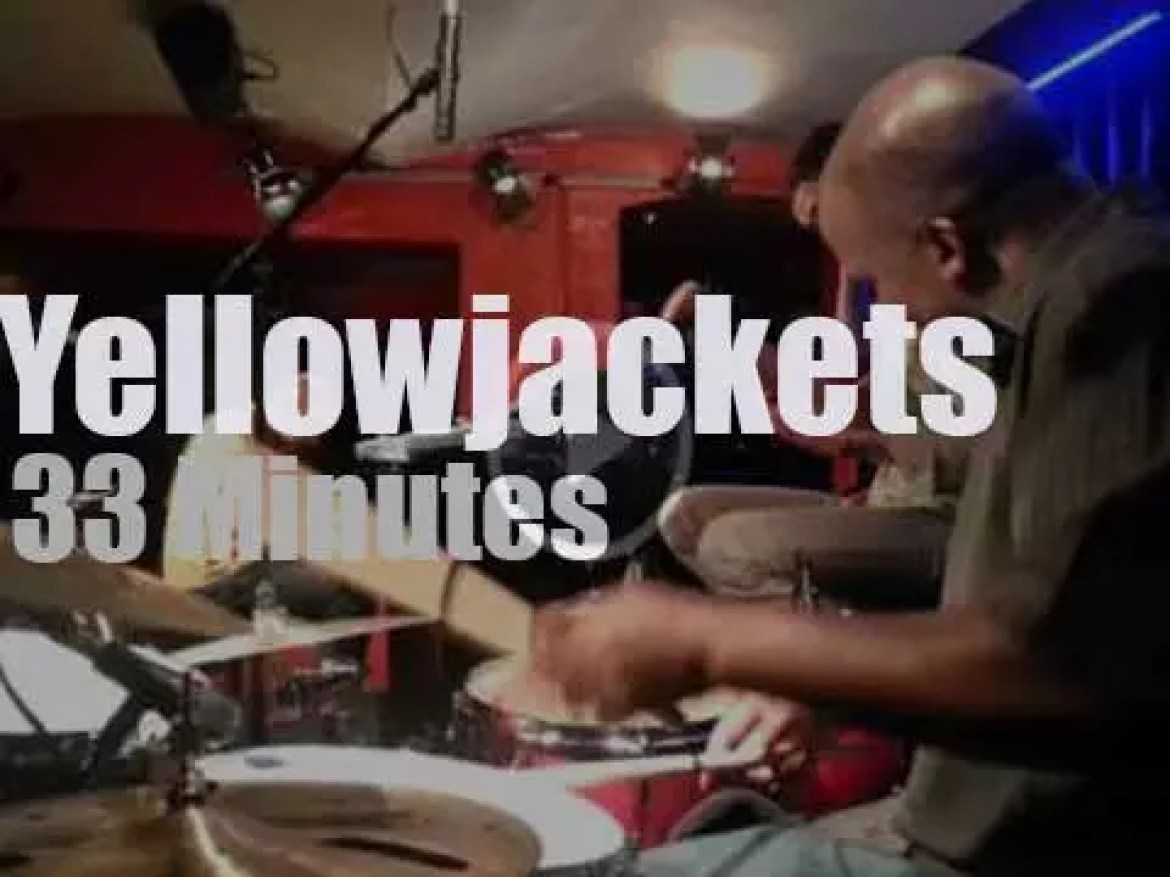 Yellowjackets are in the club (2013)