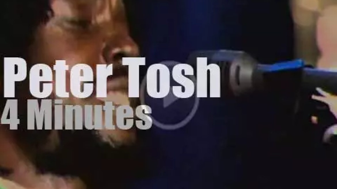 On TV today, Peter Tosh in Munich (1978)