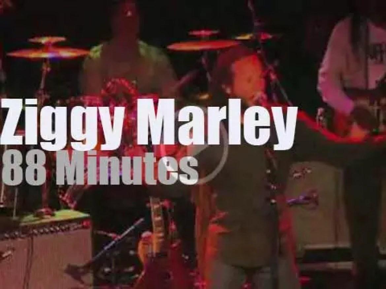 Ziggy Marley celebrates Dad's 'Kaya' '2013)