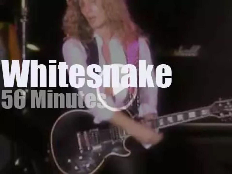 Whitesnake charm Tokyo (1984)